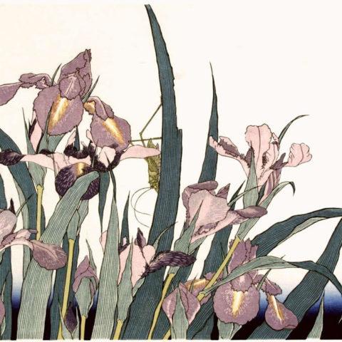 katsushika_hokusai_irissen_met_sprinkhaan_1820