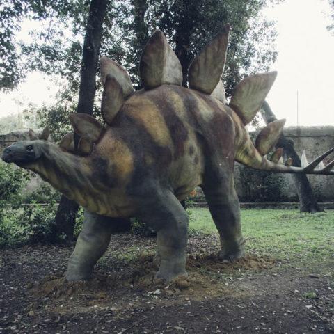 natale_livorno_dinosauri_02