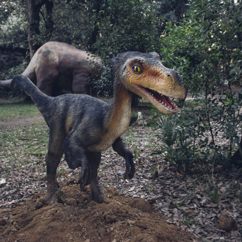 natale_livorno_dinosauri_04