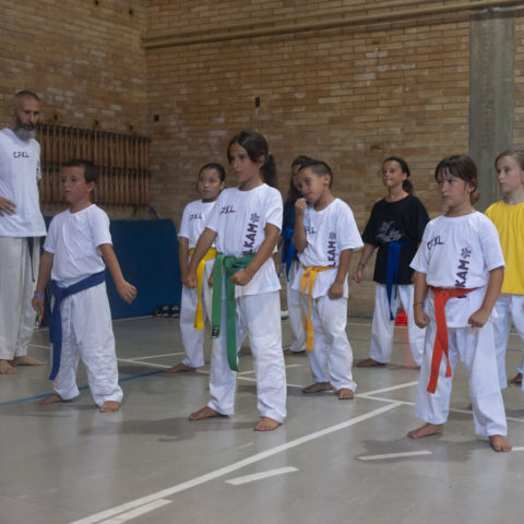 Comitato Provinciale Karate Livorno Fijikam e Zen Club - 05