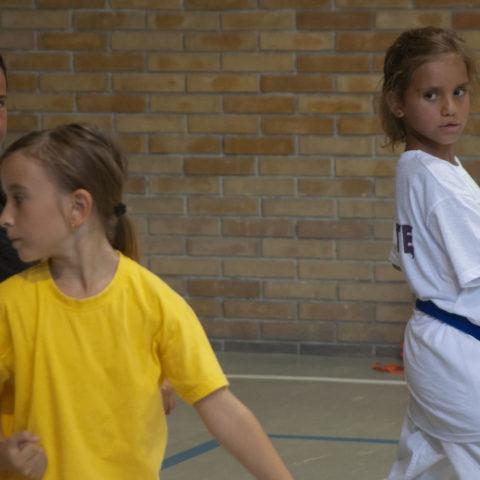 Comitato Provinciale Karate Livorno Fijikam e Zen Club - 18