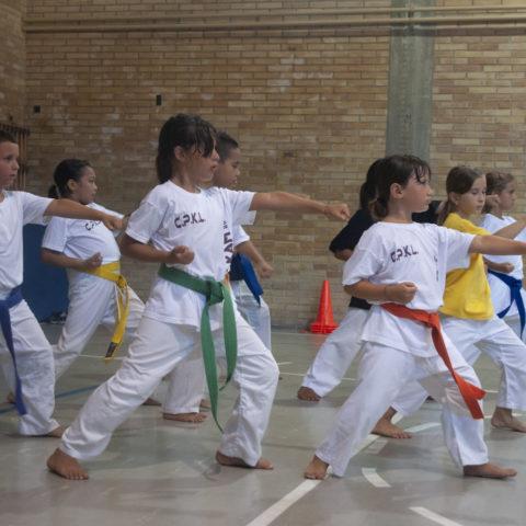 Comitato Provinciale Karate Livorno Fijikam e Zen Club - 19