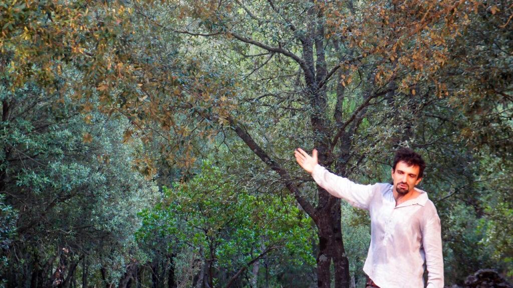 D'Elia La Grande Foresta